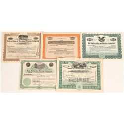 Pinal County, Arizona Mining Stock Certificates   (109263)