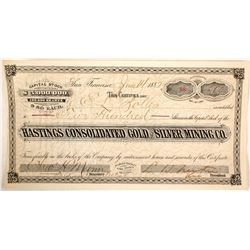 Hastings Consolidated Gold & Silver MIning Company Stock Certificate  (59480)