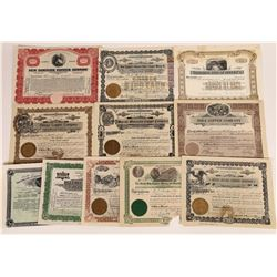 Arizona Copper Mining Stock Collection  (113802)