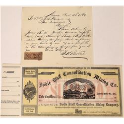 Bodie Bluff Mining Company Stock (Signed by Leland Stanford) and Letter  (123524)