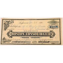 Boston Consolidated Mining Company Stock  (123526)