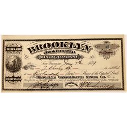 Brooklyn Consolidated Mining Company Stock  (123527)