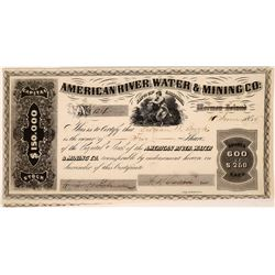 American River Water & Mining Co. Stock  (126760)