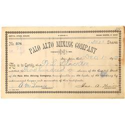 Rare Palo Alto Mining Company Stock Certificate  (126468)