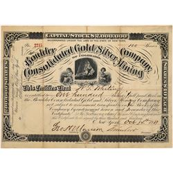 Boulder Consolidated Gold and Silver Mining Company of Colorado Stock  (123631)