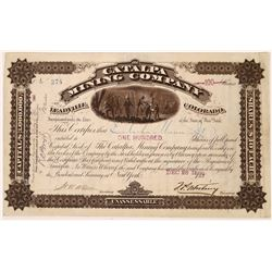 Catalpa Mining Co. Stock, Leadville, Lake County, Colorado  (123642)
