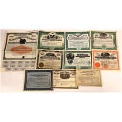 New Mexico Mining Stock Collection  (113796)