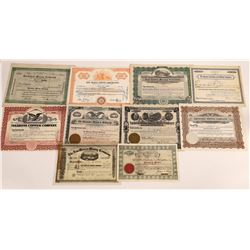 Ten Different New Mexico Mining Stock Certificates  (113794)