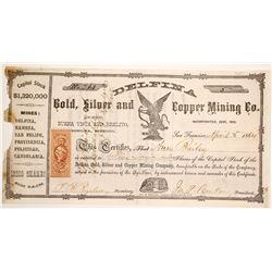 Delfina Silver and Copper Mining Stock  (90565)