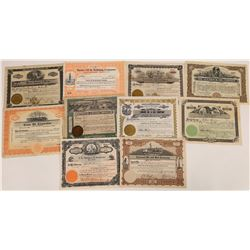 Pictorial Oil Stock Certificate Collection  (107980)