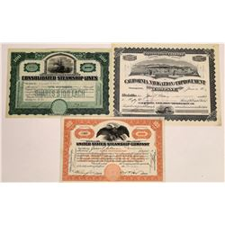 Three Different Steamship Stock Certificates  (113809)