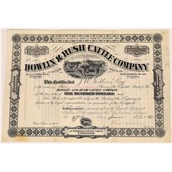 Dowlin & Rush Cattle Company Stock Certificate  (107977)