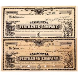 California Fertilizing Company Stock Certificate Pair  (109302)