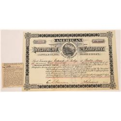 American Investment Company Stock Certificate  (125895)