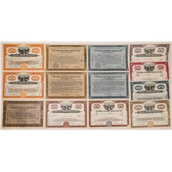 Columbia Pictures Stock Certificates (13)  (126559)