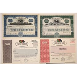 Fruit of the Loom Stock Certificate Group  (126006)