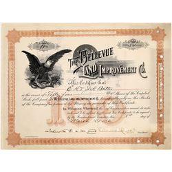 Bellevue Land & Improvement Company Stock Certificate  (126063)