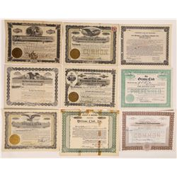 "Miscellaneous ""Clubs"" Stock Certificate Collection (17)  (126348)"