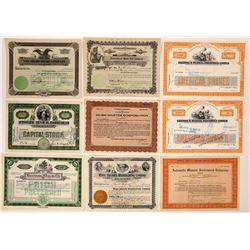 Musical Instruments & Music-Related Stock Certificates (9)  (126340)
