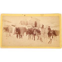 Georgetown Series Cabinet Card, McKirahan