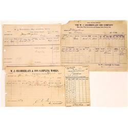 W. J. Chamberlain & H. K. White of Idaho Springs Assay Group  (123617)