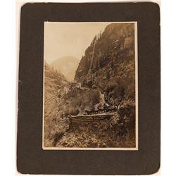 Silverton, Colorado Photograph of Wagons Hauling Ore/Supplies down the Mountain  (1236