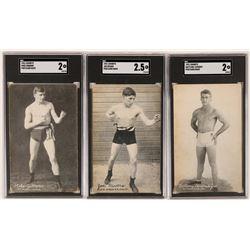 Exhibits Boxer Postcard Trio  (119265)