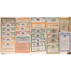 East Coast Horse Racing Stock Certificate Collection  (126322)