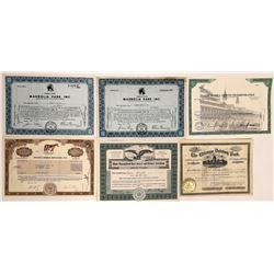 Horse Racing Stock Certificate Group  (126320)