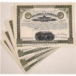 Alaska United Gold Mining Company Stock Certificates (20)  (126013)