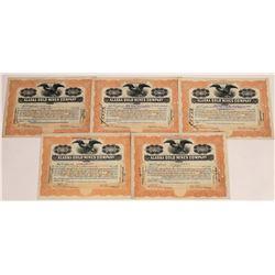 Alaska Gold Mines Company Stock Certificates  (109294)