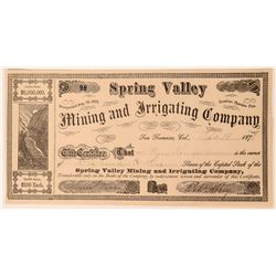 Spring Valley Mining & Irrigating Company Stock Certificate  (113241)