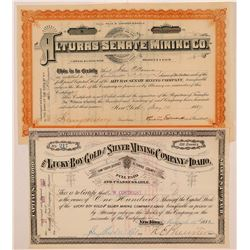 Alturas Senate Mining Company Stock  (108167)
