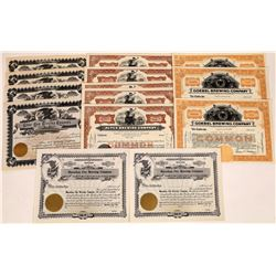 Brewing Company Stock Certificate Collection  (109314)