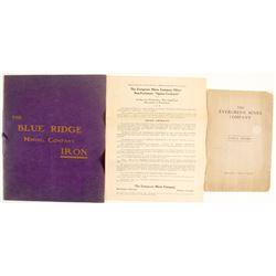 Evergreen Mines Annual Report; Blue Ribbon Mining Prospectus  (100078)