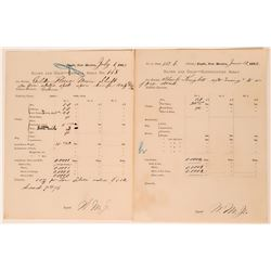 New Mexico Territory Mining Assay Reports  (113236)