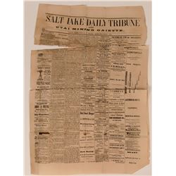 Salt Lake City Daily Tribune and Mining Gazette  (113600)