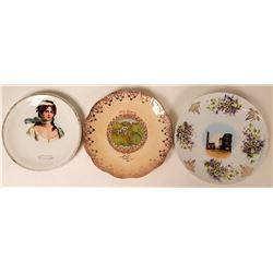 Souvenir Plate Collection, Texas (3)  (115354)