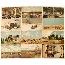 Collection of Large Size Chromo Lithograph Cards - RARE  (123493)