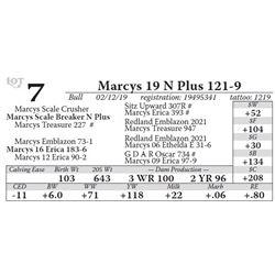 Marcys 19 N Plus 121-9