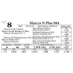 Marcys N Plus 984
