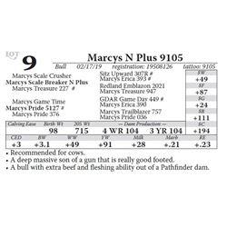 Marcys N Plus 9105