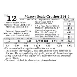 Marcys Scale Crusher 214-9