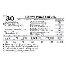 Marcys Prime Cut 925
