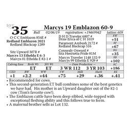 Marcys 19 Emblazon 60-9