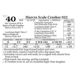 Marcys Scale Crusher 022