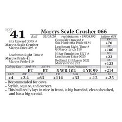 Marcys Scale Crusher 066