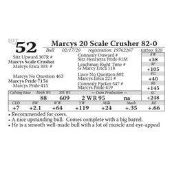 Marcys 20 Scale Crusher 82-0