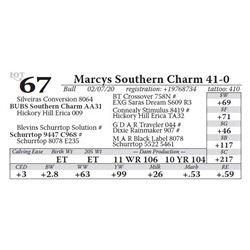 Marcys Southern Charm 41-0