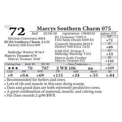 Marcys Southern Charm 075